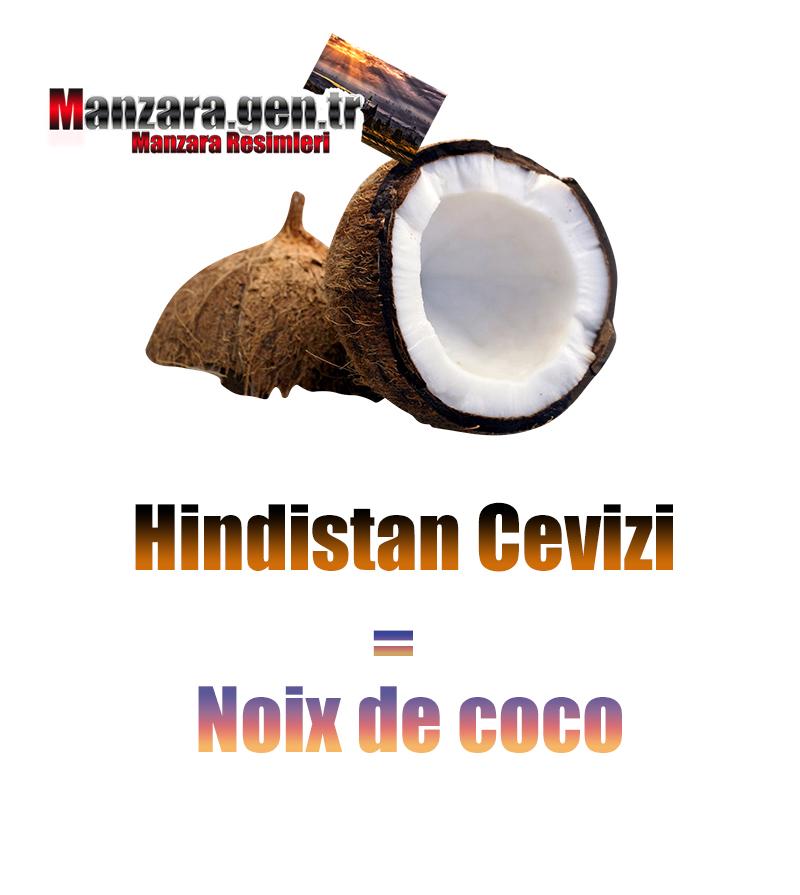 Hindistan Cevizinin Fransızcası Nedir ? Hindistan Cevizi Fransızca Nasıl Yazılır ? Quel est le turc de noix de coco ? Comment écrire la noix de coco en turc?