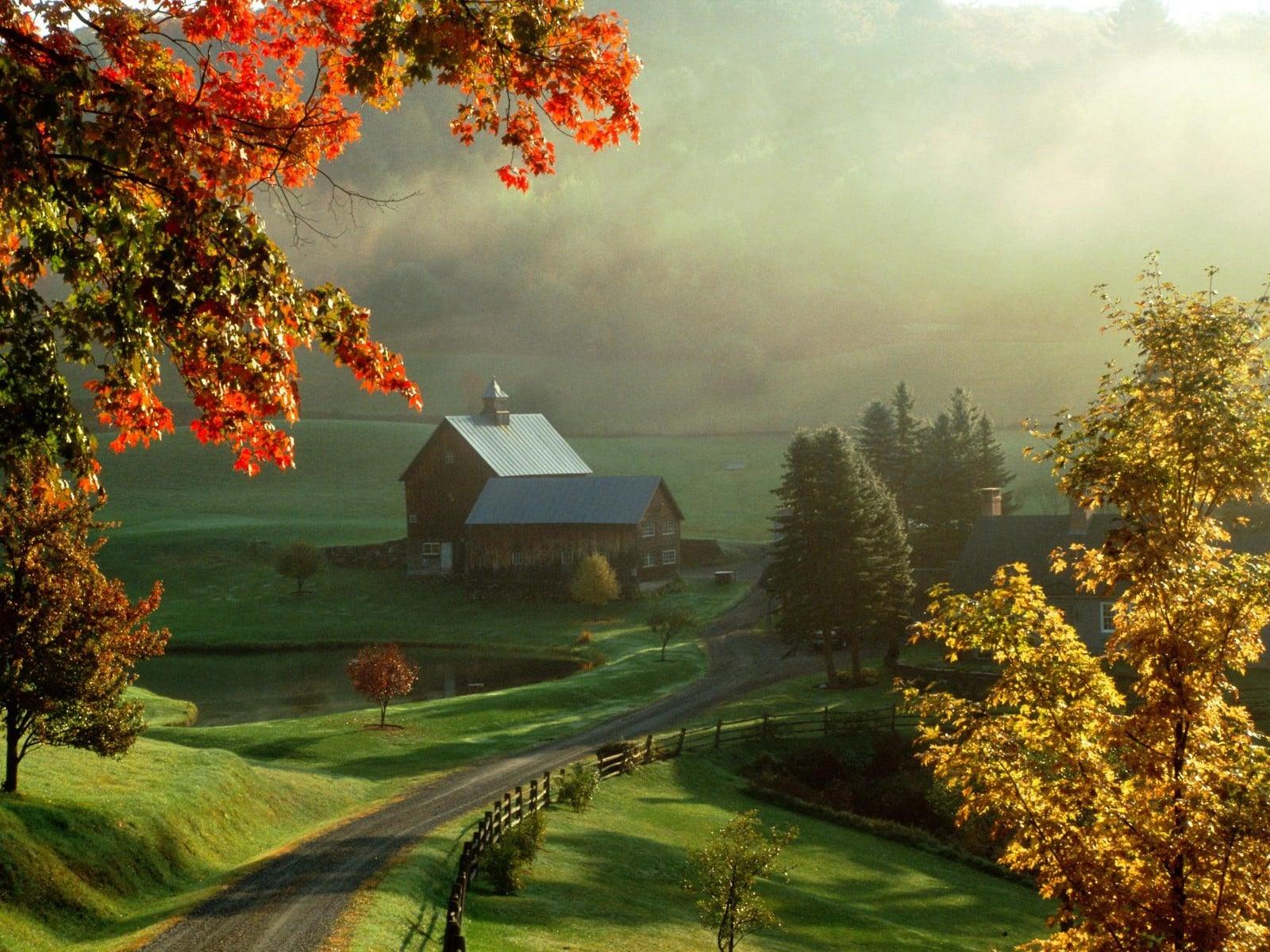 Köy Yerinde Puslu Sonbahar