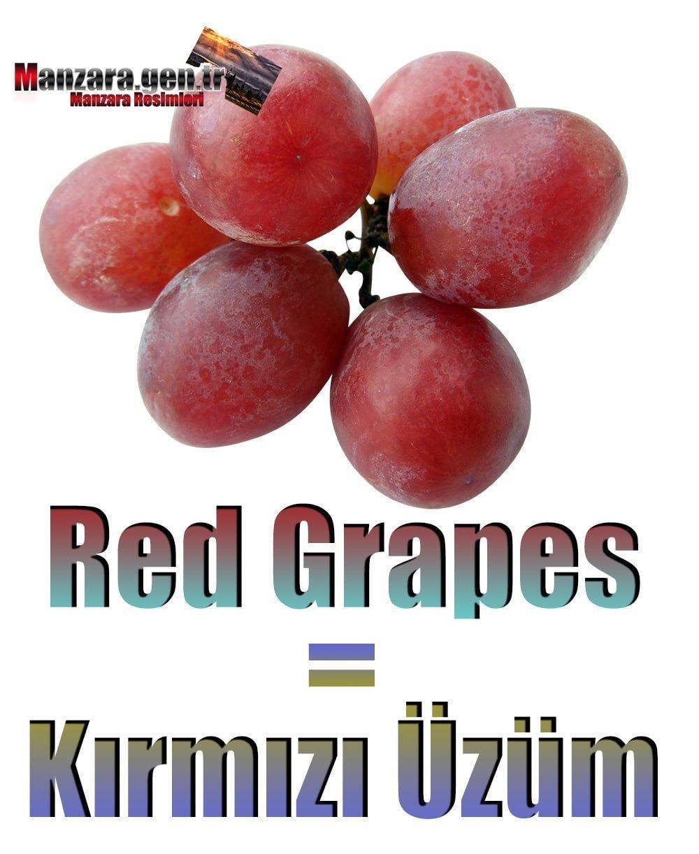 Kırmızı Üzümün İngilizcesi (Red Grapes)