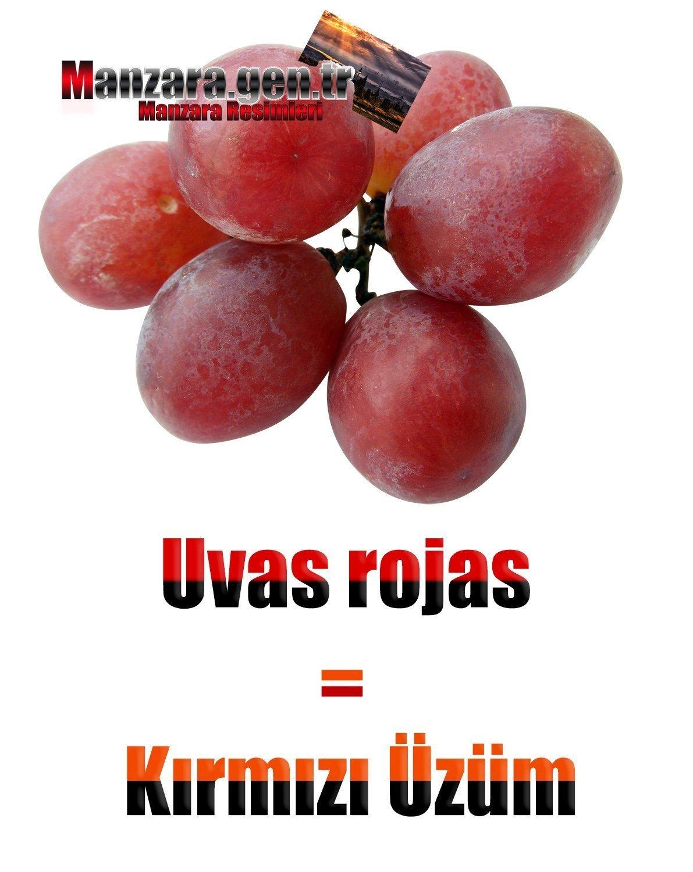 İspanyolca Meyve İsimleri - Kırmızı Üzümün İspanyolcası (Uvas rojas)