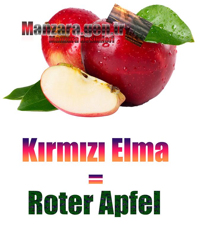 Kırmızı Elmanın Almancası Nedir ? Kırmızı Elma Almanca Nasıl Yazılır ? Was ist Kirsche Türkisch? Wie schreibe ich Kirsche auf Türkisch?