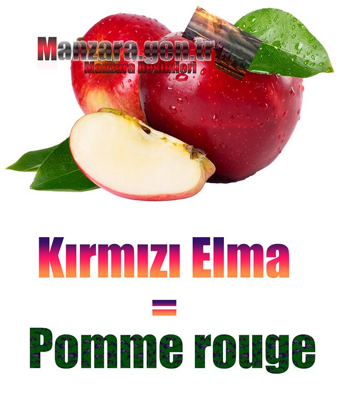 Kırmızı elmanın Fransızcası Nedir ? Kırmızı elma Fransızca Nasıl Yazılır ? Quel est le turc de pomme rouge ? Comment écrire la pomme rouge en turc?