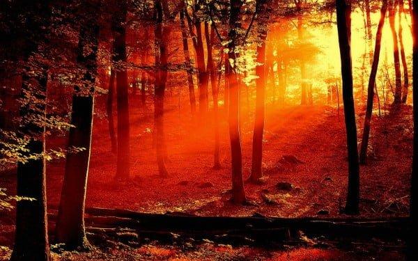 Kızıldan gün sonu