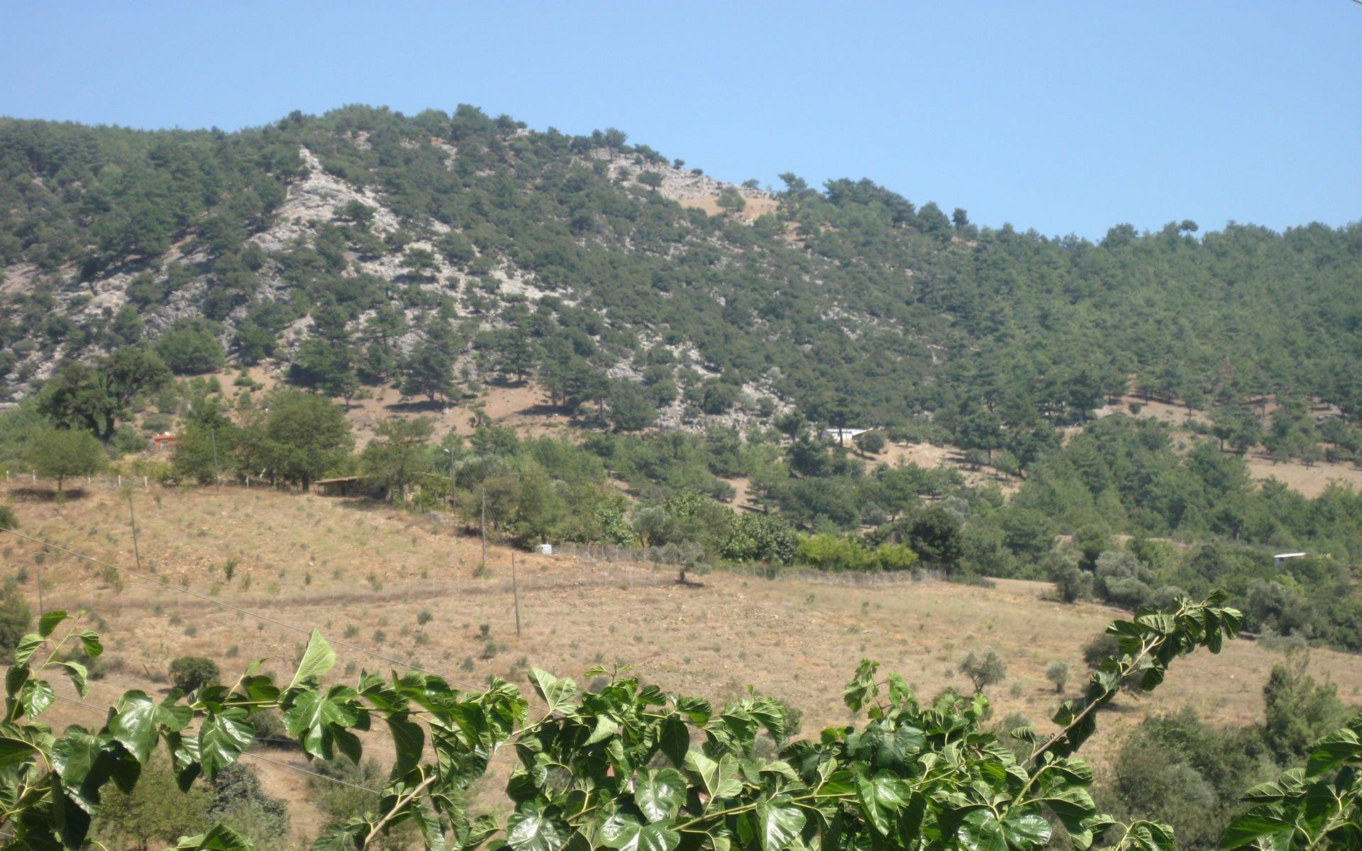Kızlarsekisi Köyü