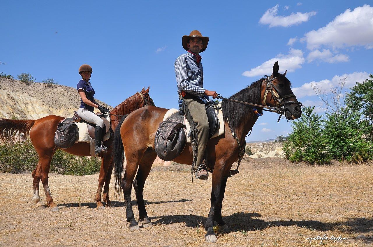 Kapadokya – Atlar