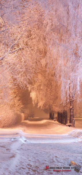 Kar ve Kış Manzarası Note 10 için