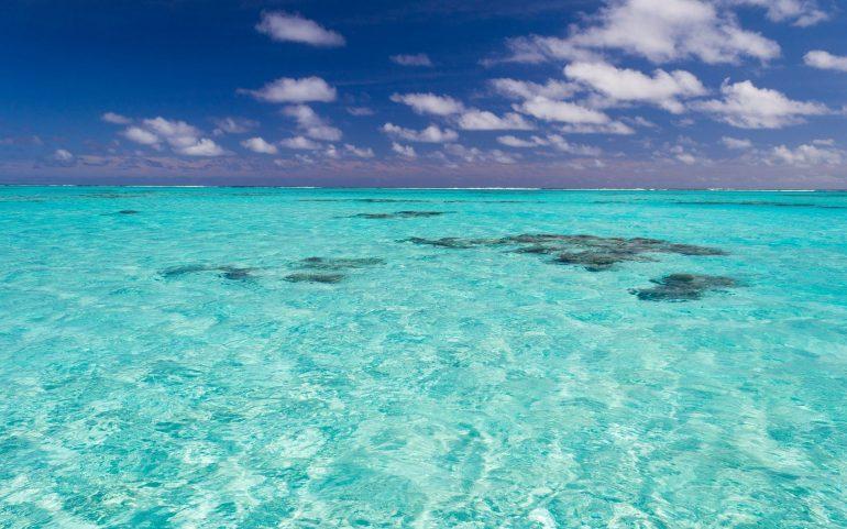 Atlas Okyanusu – Karayip Denizi