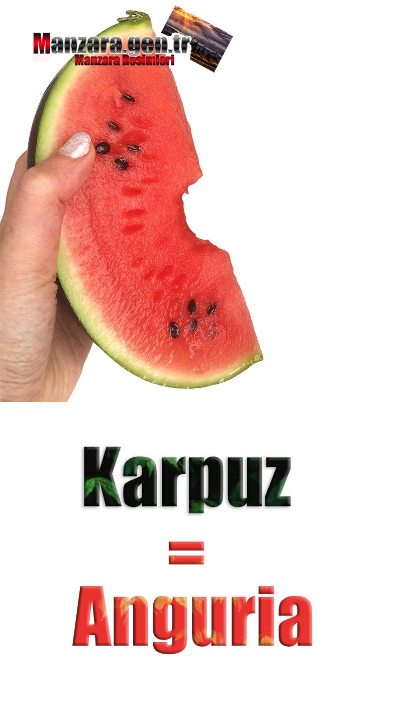 İtalyanca Meyve İsimleri - Karpuzun İtalyancası Nedir ? Karpuz İtalyanca Nasıl Yazılır ? Che cos'è il turco in anguria? Come scrivere anguria in turco?