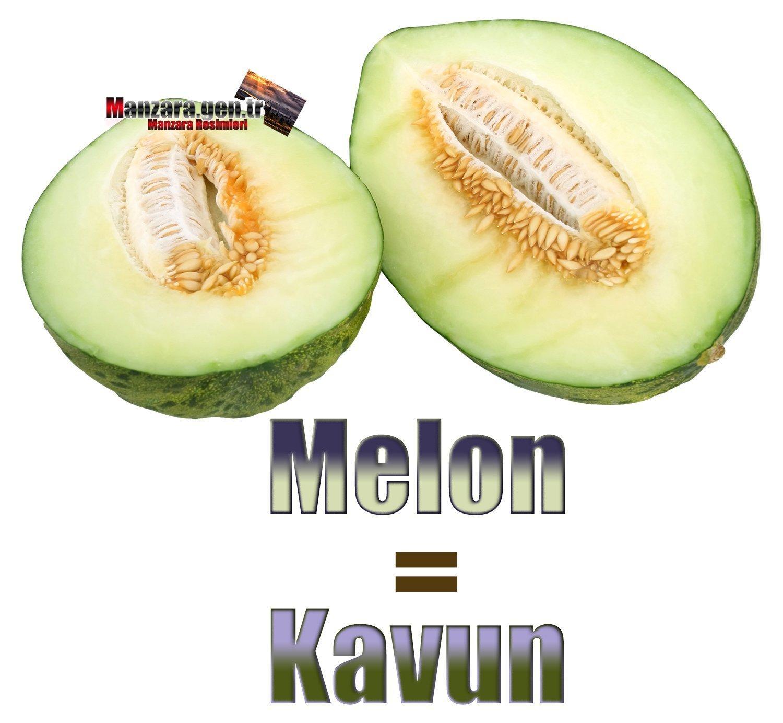 Kavunun İngilizcesi (Melon)