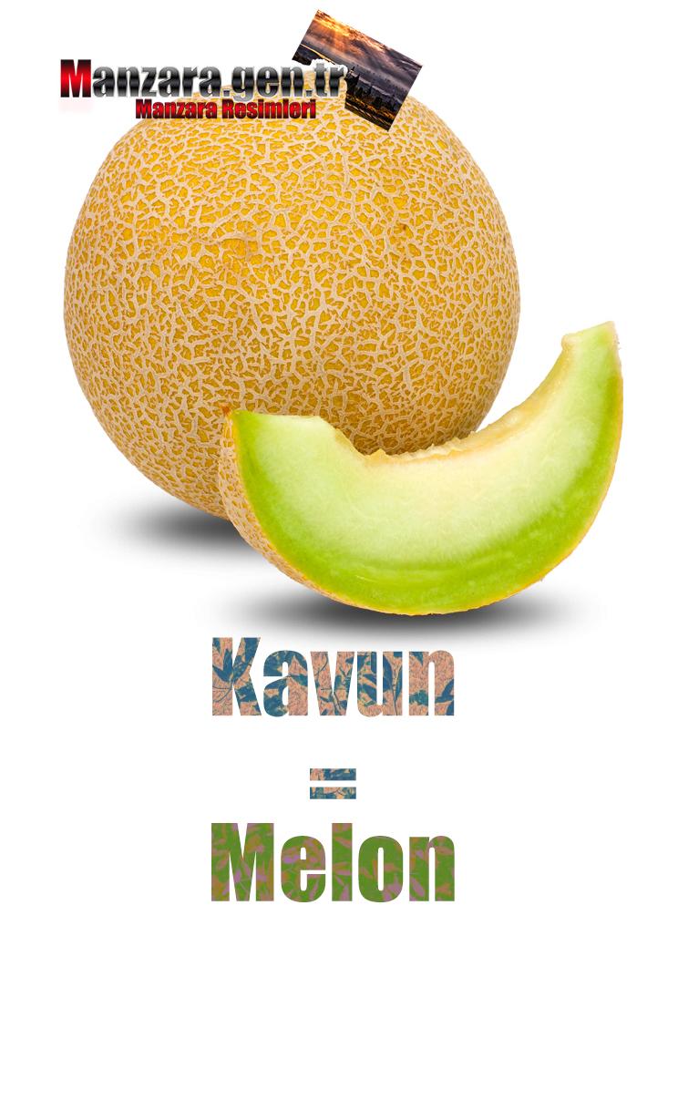 Kavunun Fransızcası Nedir ? Kavun Fransızca Nasıl Yazılır ? Quel est le turc de melon ? Comment écrire la melon en turc?