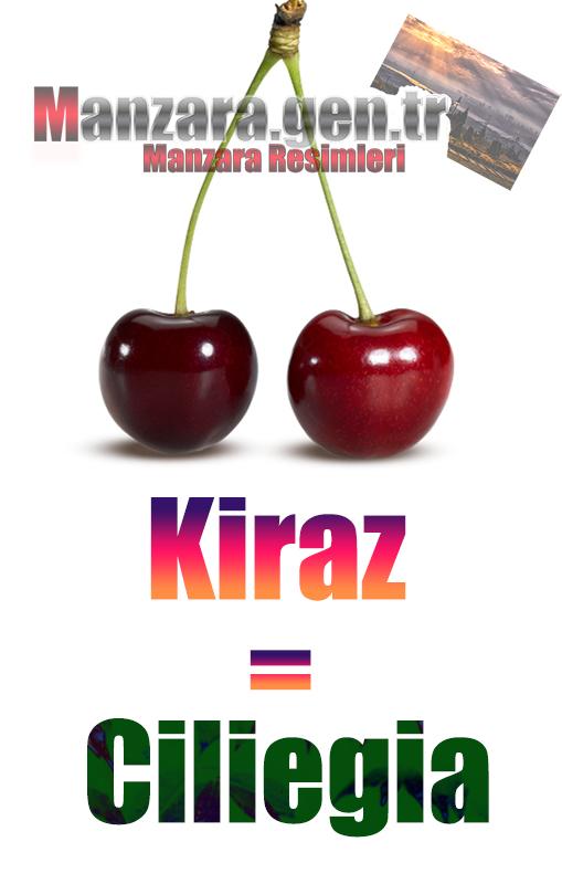 Kirazın İtalyancası Nedir ? Kiraz İtalyanca Nasıl Yazılır ? Che cos'è il turco in ciliegia? Come scrivere ciliegia in turco?