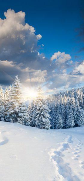 Kış Manzaraları Yüksek Çözünürlüklü Telefonlar İçin