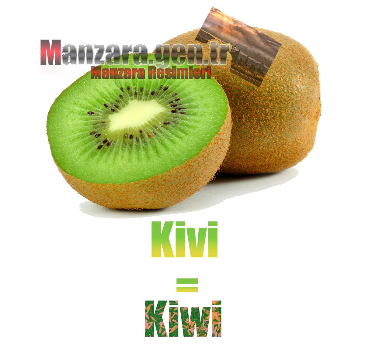 Kivinin Almancası Nedir ? Kivi Almanca Nasıl Yazılır ? Was ist Kiwi Türkisch? Wie schreibe ich Kiwi auf Türkisch?