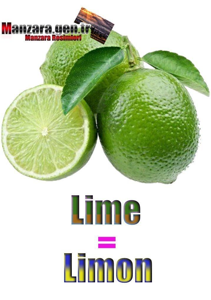Limonun İngilizcesi (Lime)