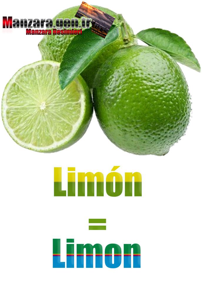 İspanyolca Meyve İsimleri - Limonun İspanyolcası (Limón)