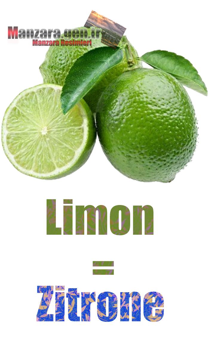 Limonun Almancası Nedir ? Limon Almanca Nasıl Yazılır ? Was ist Zitrone Türkisch? Wie schreibe ich Zitrone auf Türkisch?