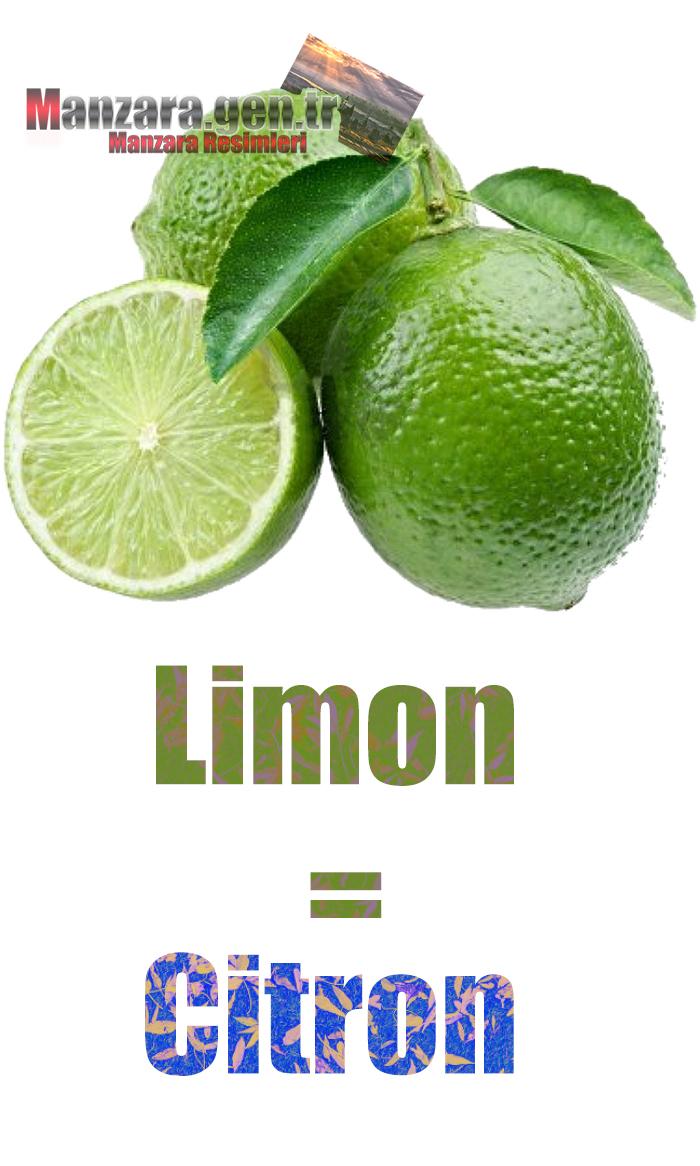 Limonun Fransızcası Nedir ? Limon Fransızca Nasıl Yazılır ? Quel est le turc de citron ? Comment écrire la citron en turc?