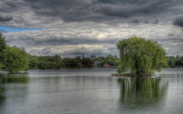 Mükemmel göl manzarası