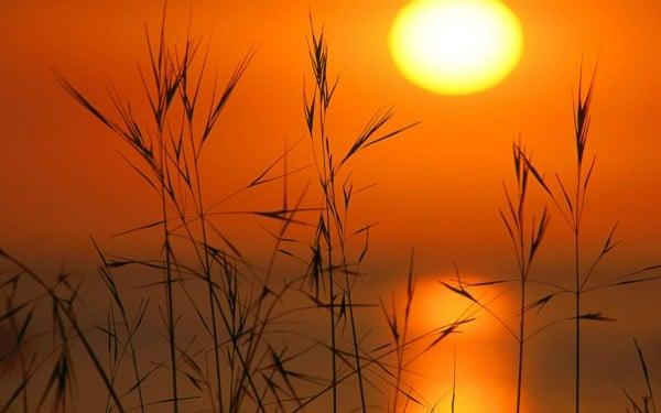 Makro gün batımı