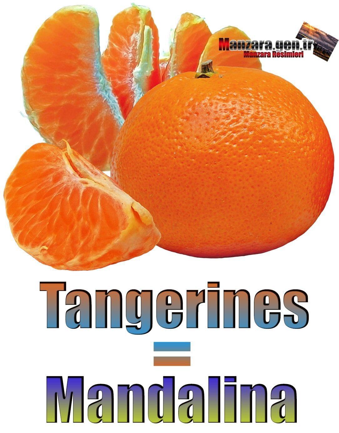 Mandalinanın İngilizcesi (Tangerines)