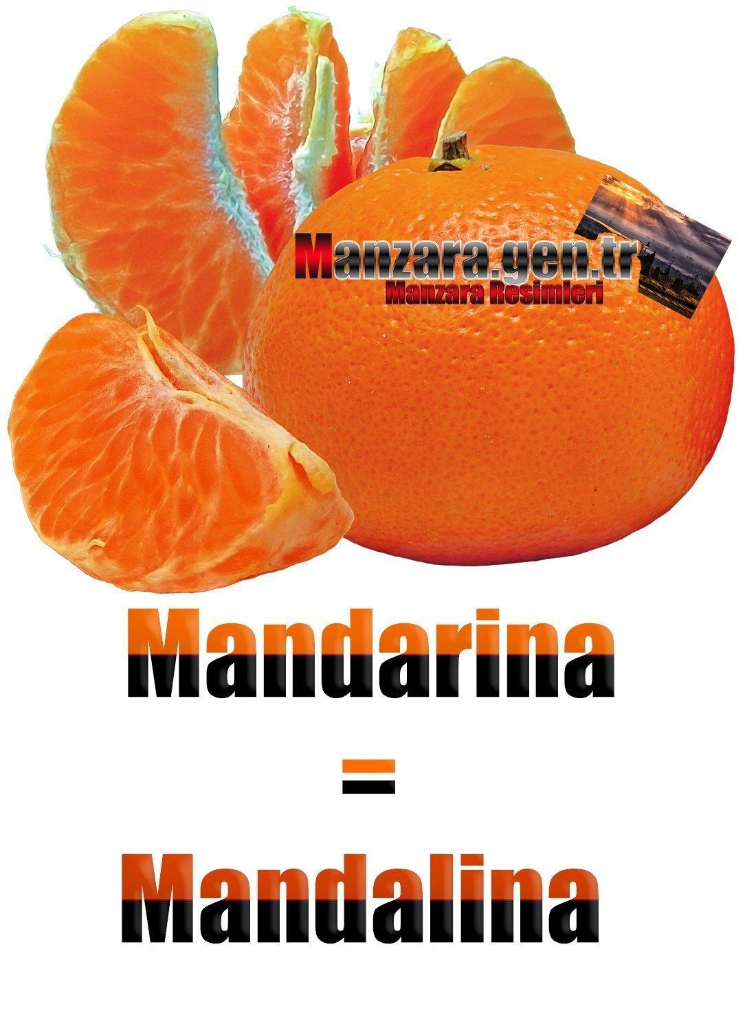 Mandalinanın İspanyolcası (Mandarina)