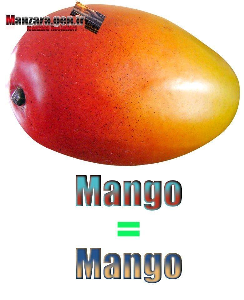 Mango İngilizcesi (Mango)