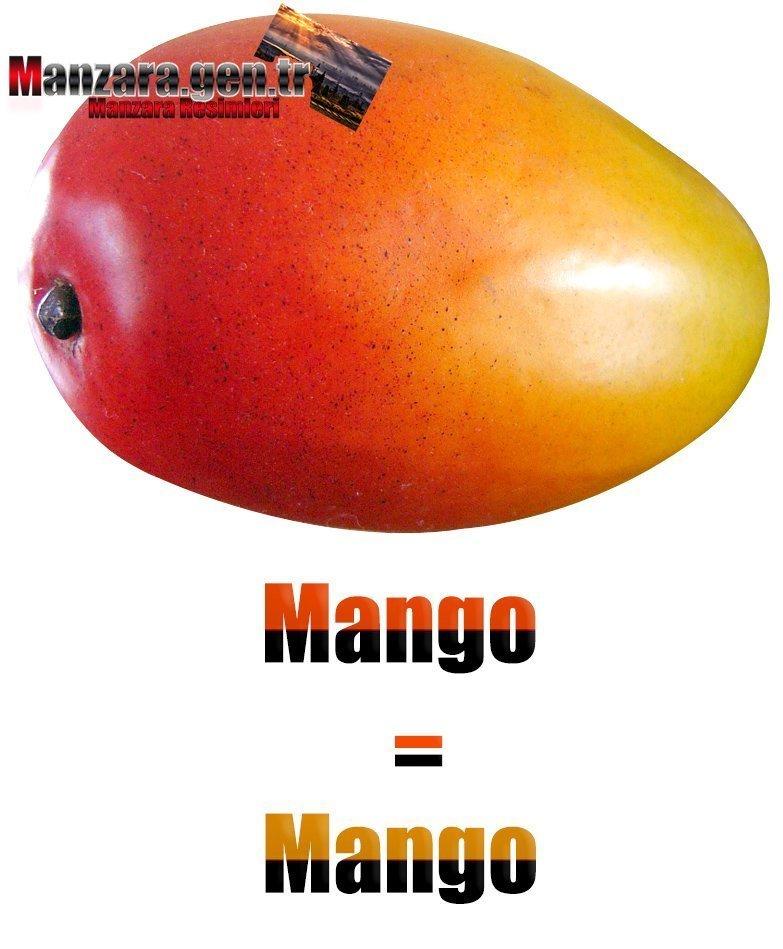 İspanyolca Meyve İsimleri - Mangonun İspanyolcası (Mango)