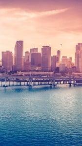 Miami Deniz iPhone 6 Plus