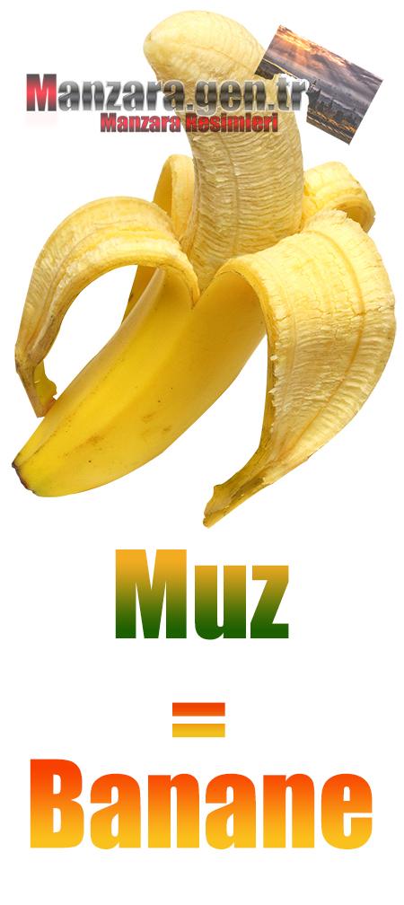 Almanca Meyve İsimleri - Muzun Almancası Nedir ? Muz Almanca Nasıl Yazılır ? Was ist Banane Türkisch? Wie schreibe ich Banane auf Türkisch?