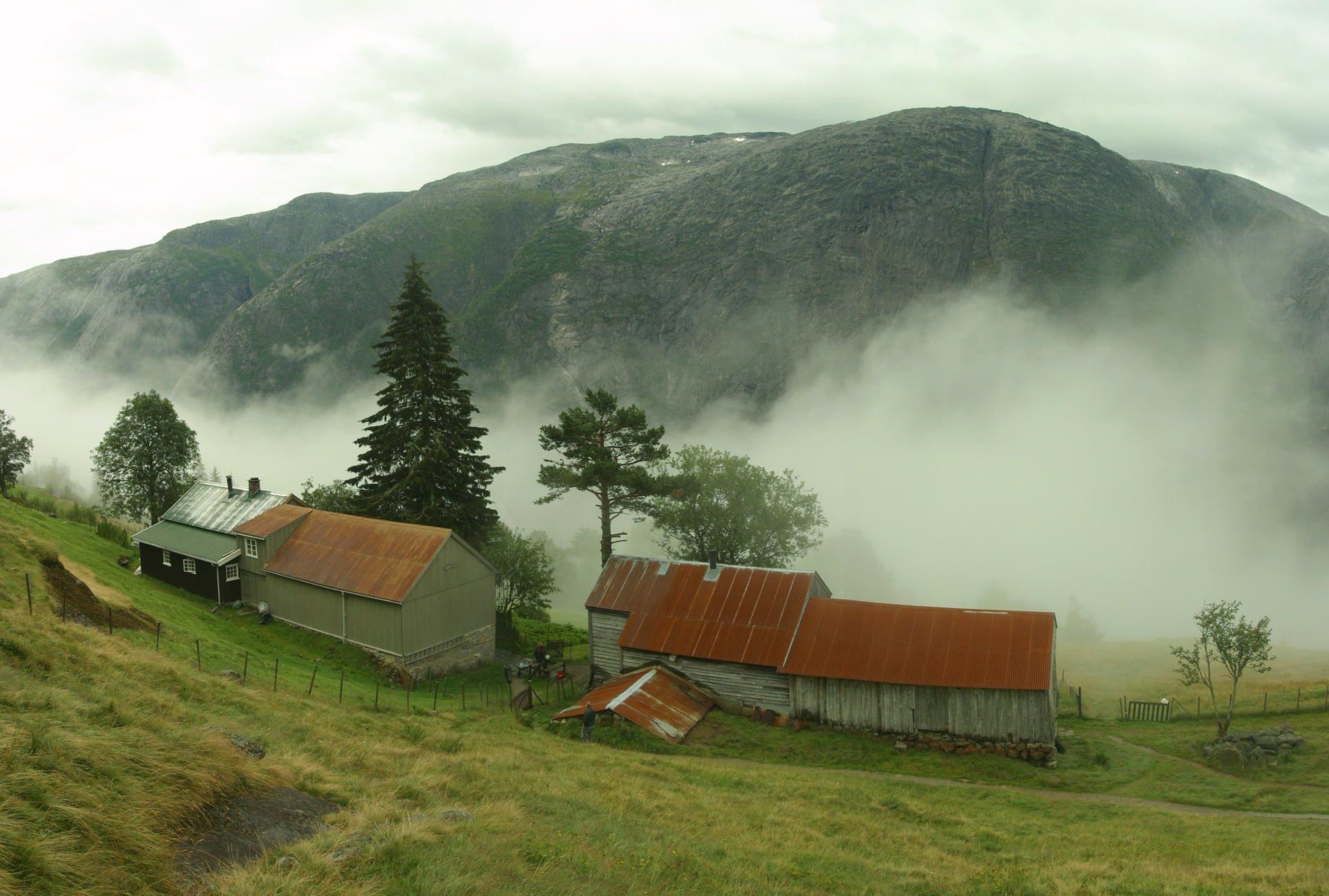 Norveç Arka Planları – 2