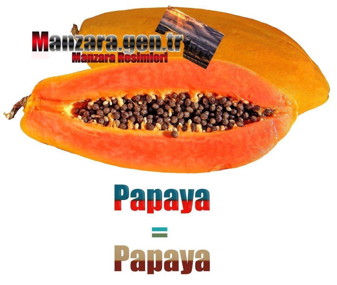 İspanyolca Meyve İsimleri - Papayanın İspanyolcası (Papaya)