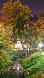 Park Gece Manzarası
