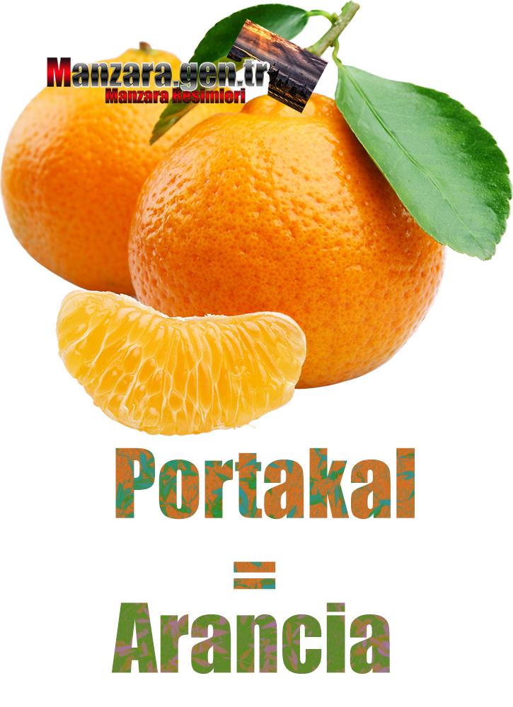 İtalyanca Meyve İsimleri - Portakalın İtalyancası Nedir ? Portakal İtalyanca Nasıl Yazılır ? Che cos'è il turco in arancia? Come scrivere arancia in turco?