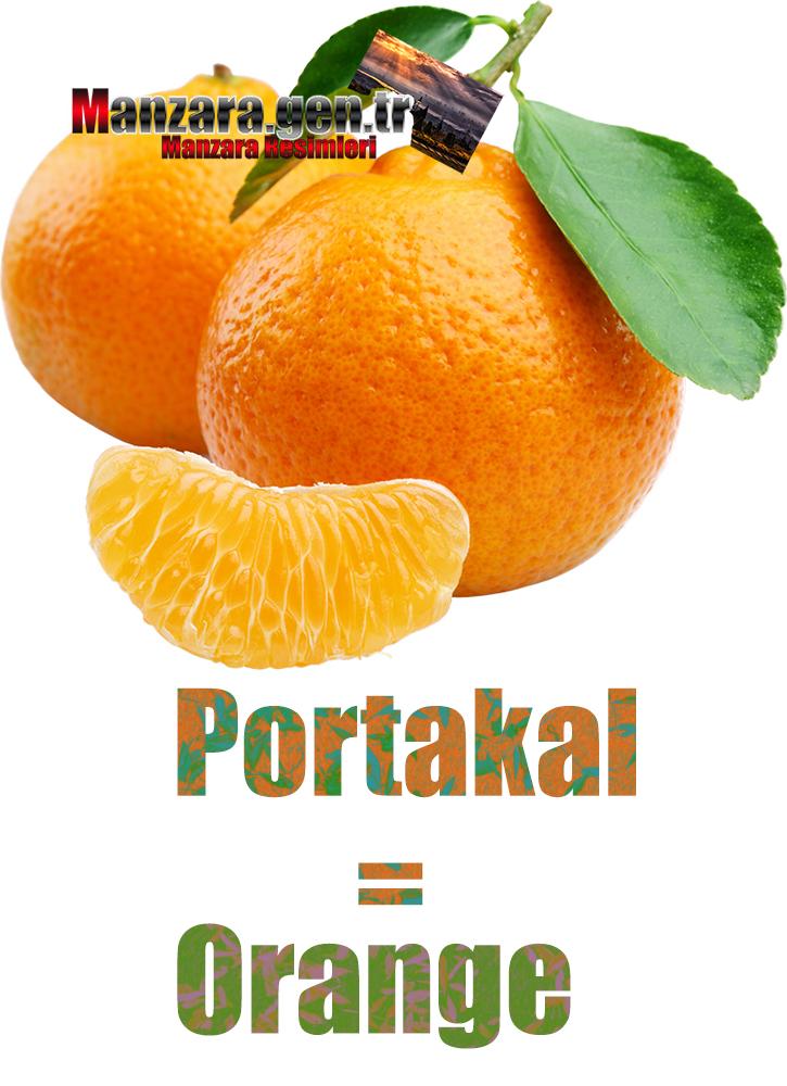 Almanca Meyve İsimleri - Portakalın Almancası Nedir ? Portakal Almanca Nasıl Yazılır ? Was ist orange Türkisch? Wie schreibe ich orange auf Türkisch?