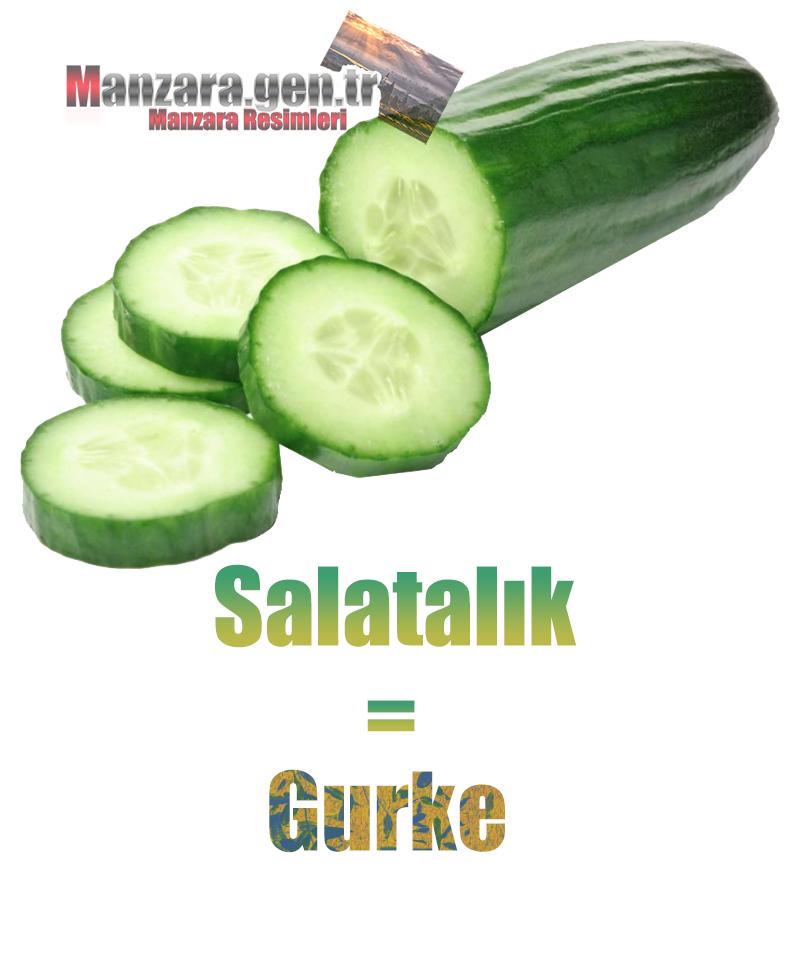 Almanca Meyve İsimleri - Salatalığın Almancası Nedir ? Salatalık Almanca Nasıl Yazılır ? Was ist gurke Türkisch? Wie schreibe ich gurke auf Türkisch?