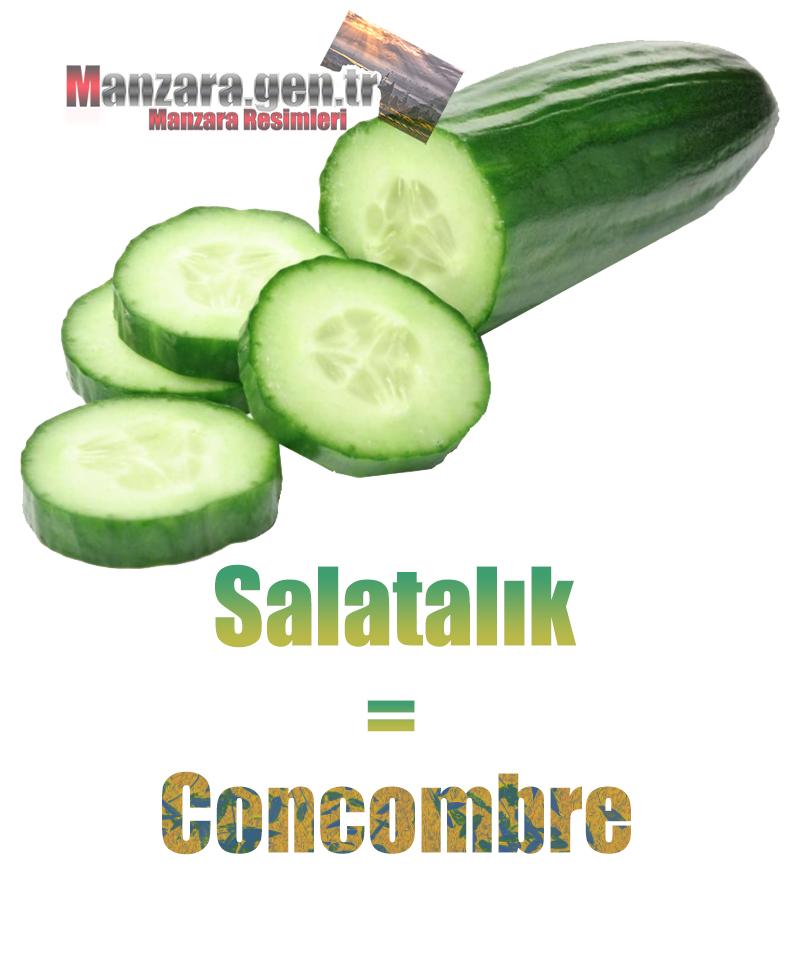 Fransızca Meyve İsimleri - Salatalığın Fransızcası Nedir ? Salatalık Fransızca Nasıl Yazılır ? Quel est le turc de concombre ? Comment écrire la concombre en turc?