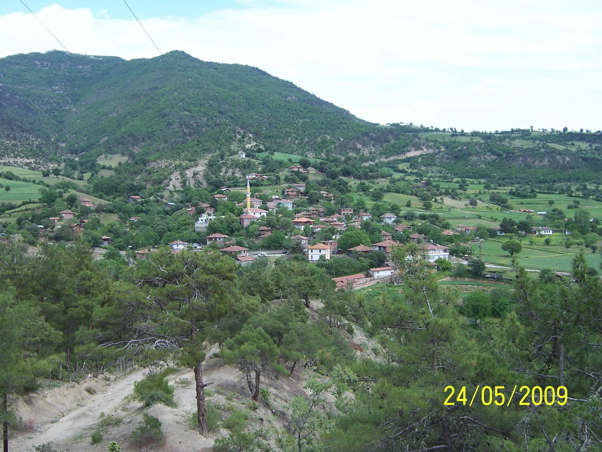 Sinop Manzarası