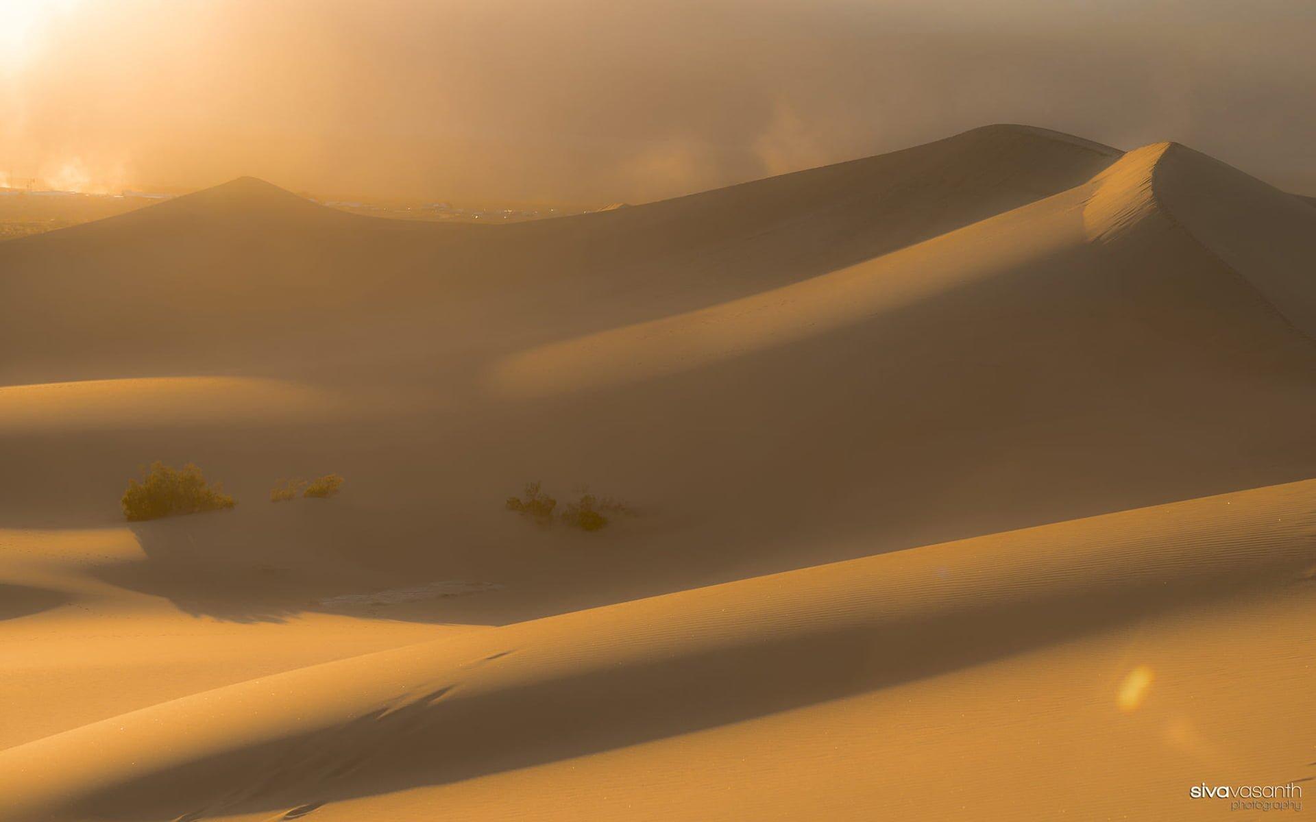 Sisli Çöl Manzarası