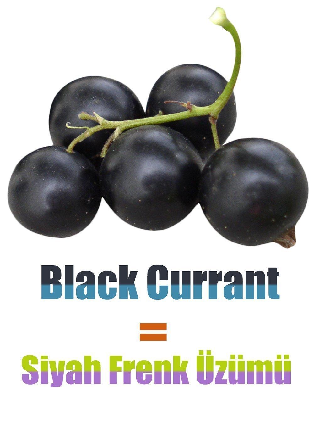 İngilizce Meyve İsimleri - Siyah Frenk Üzümü İngilizcesi (Black Currant)