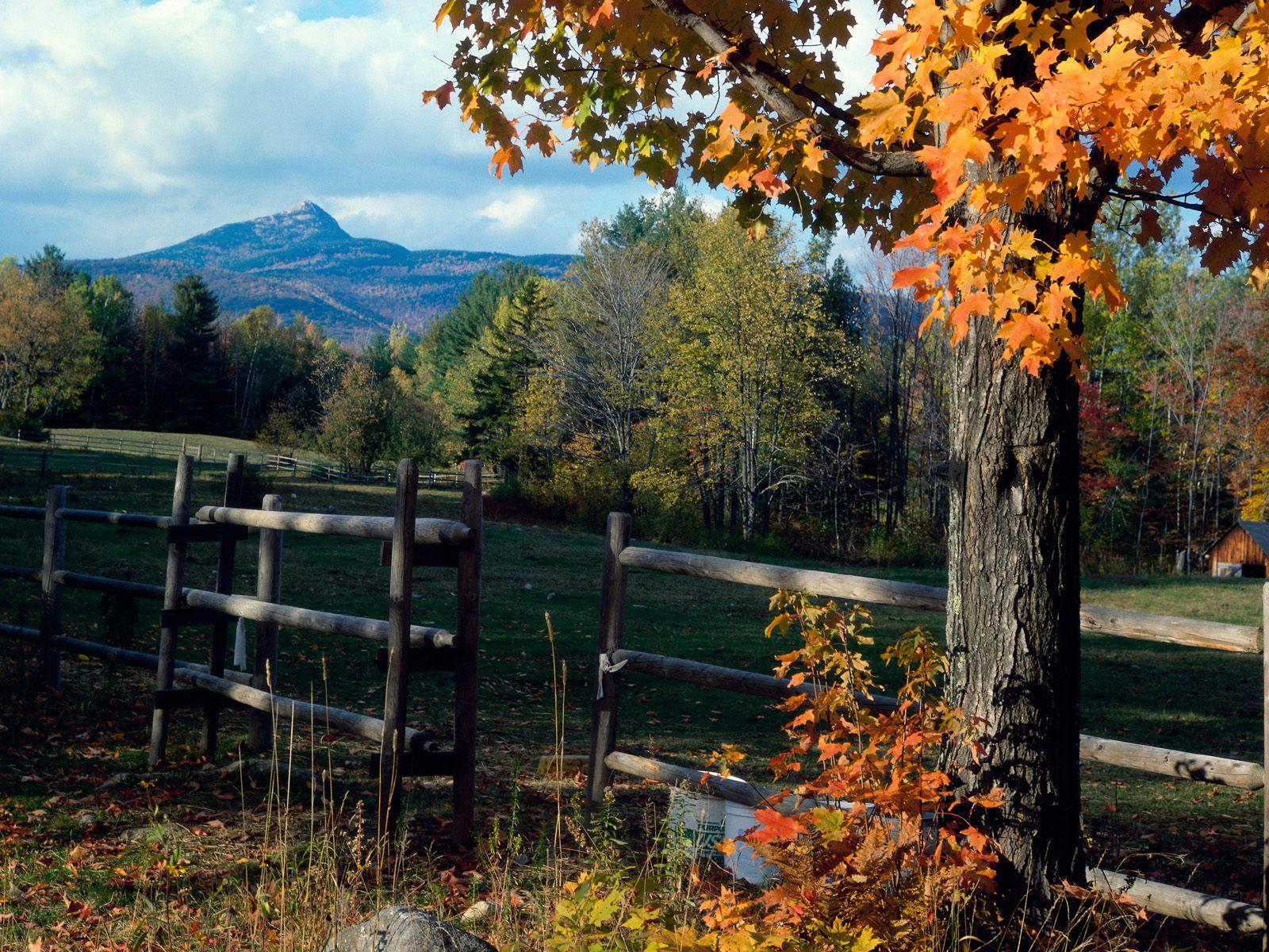 Sonbahardan Güzel Manzaralar - Sonbaharda akşam