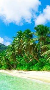 Tropik 1080x1920