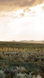 Utah USA LG G3