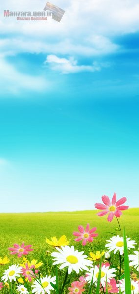 Galaxy Note 10 Duvar Kağıtları - Telefonunuz için yapay çiçek duvar kağıtları..
