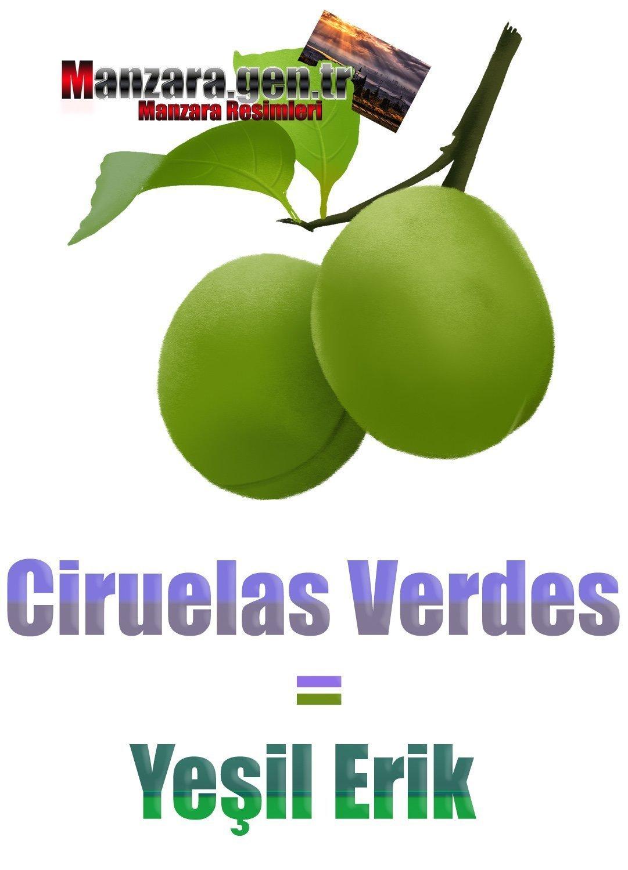 Yeşil Eriğin İspanyolcası (Ciruelas Verdes)