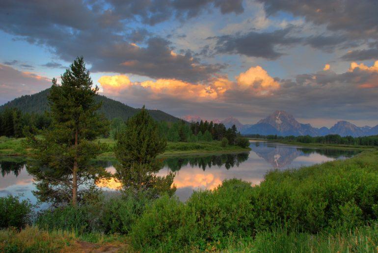 ağaçlar ve göl yansıması