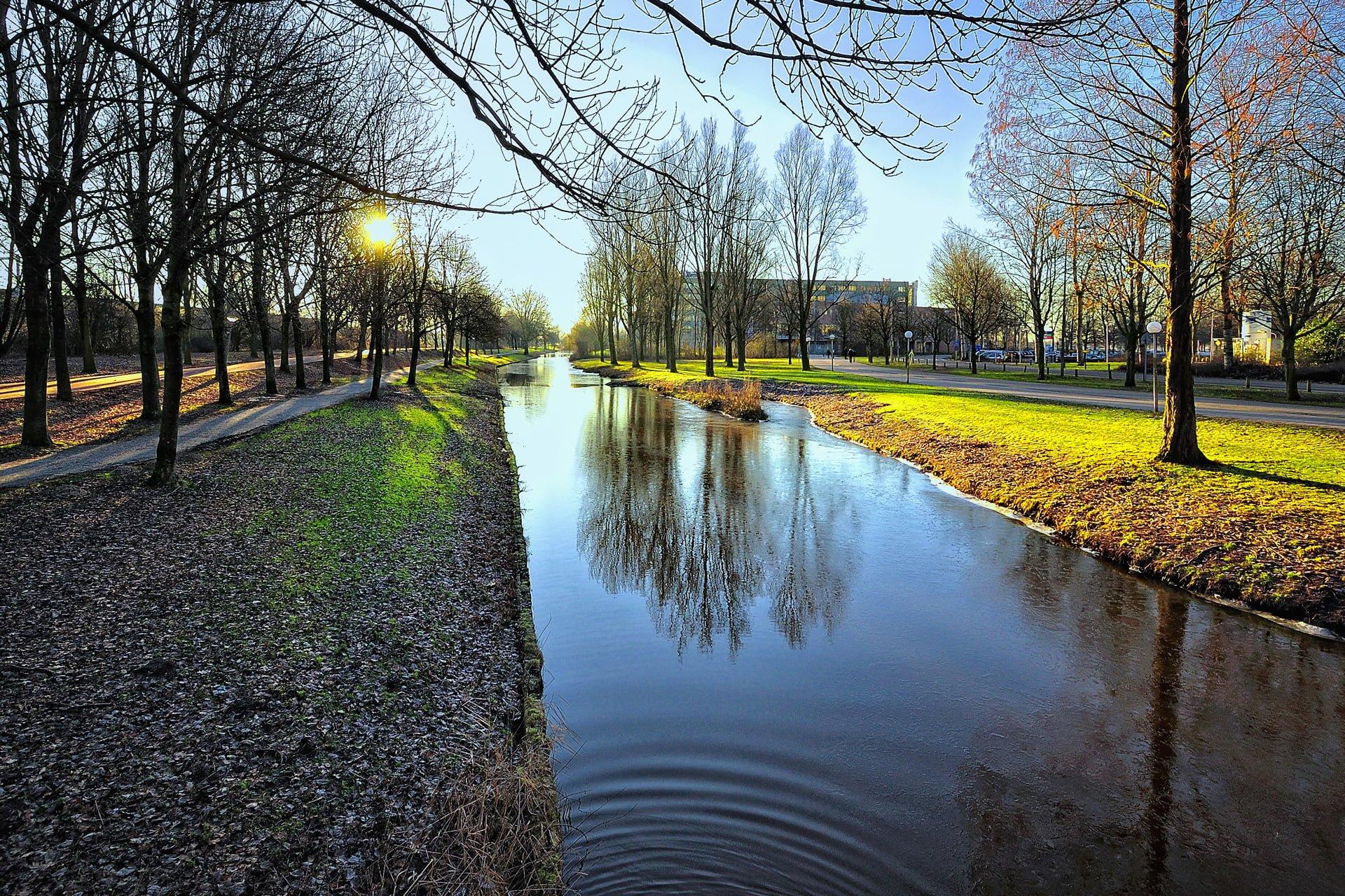 amsterdam resimleri – 10