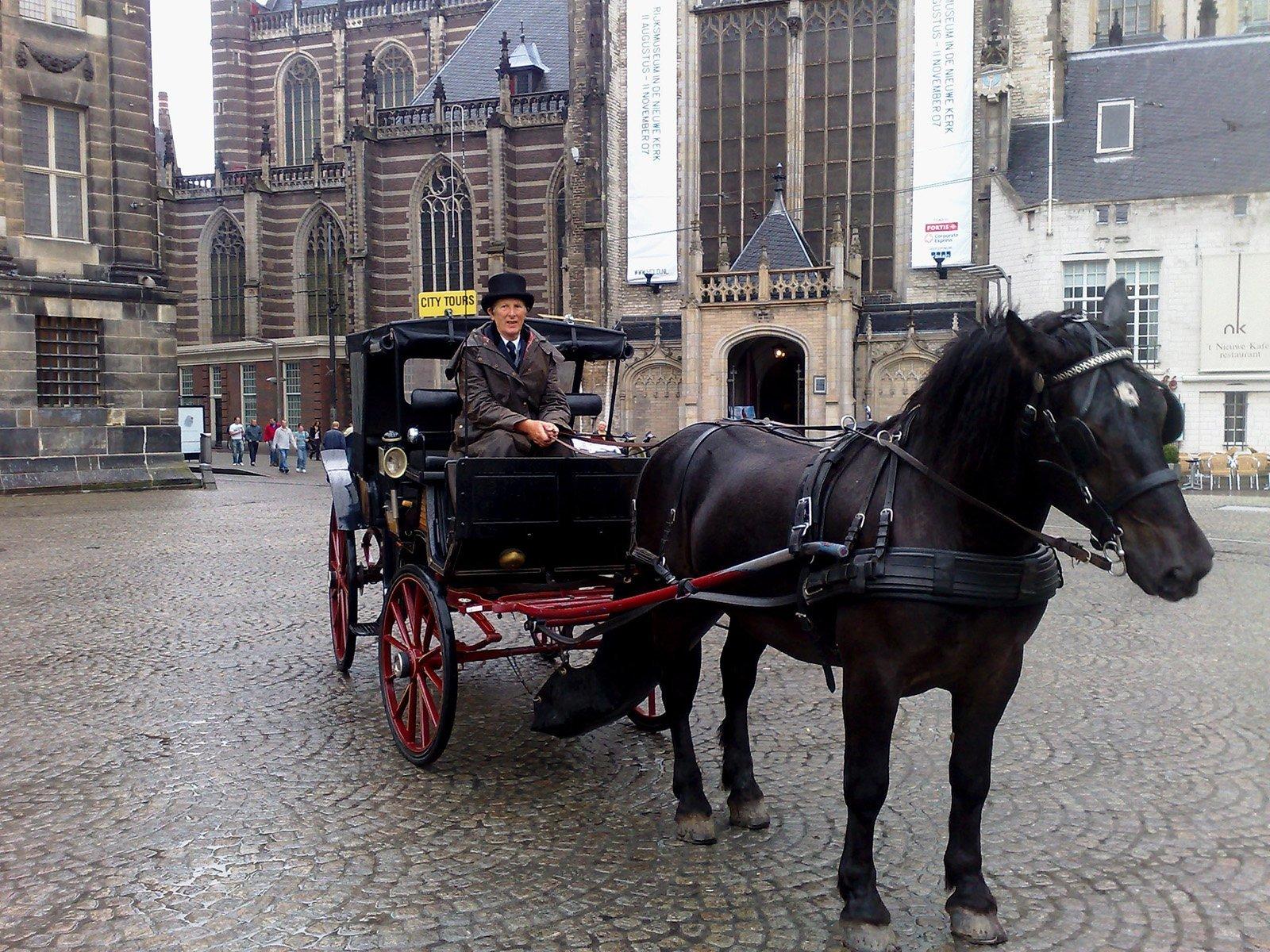 amsterdam ve paytoncu