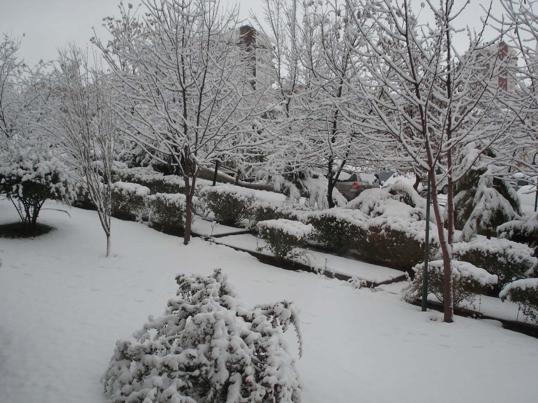 Bahçemizde ki kar…
