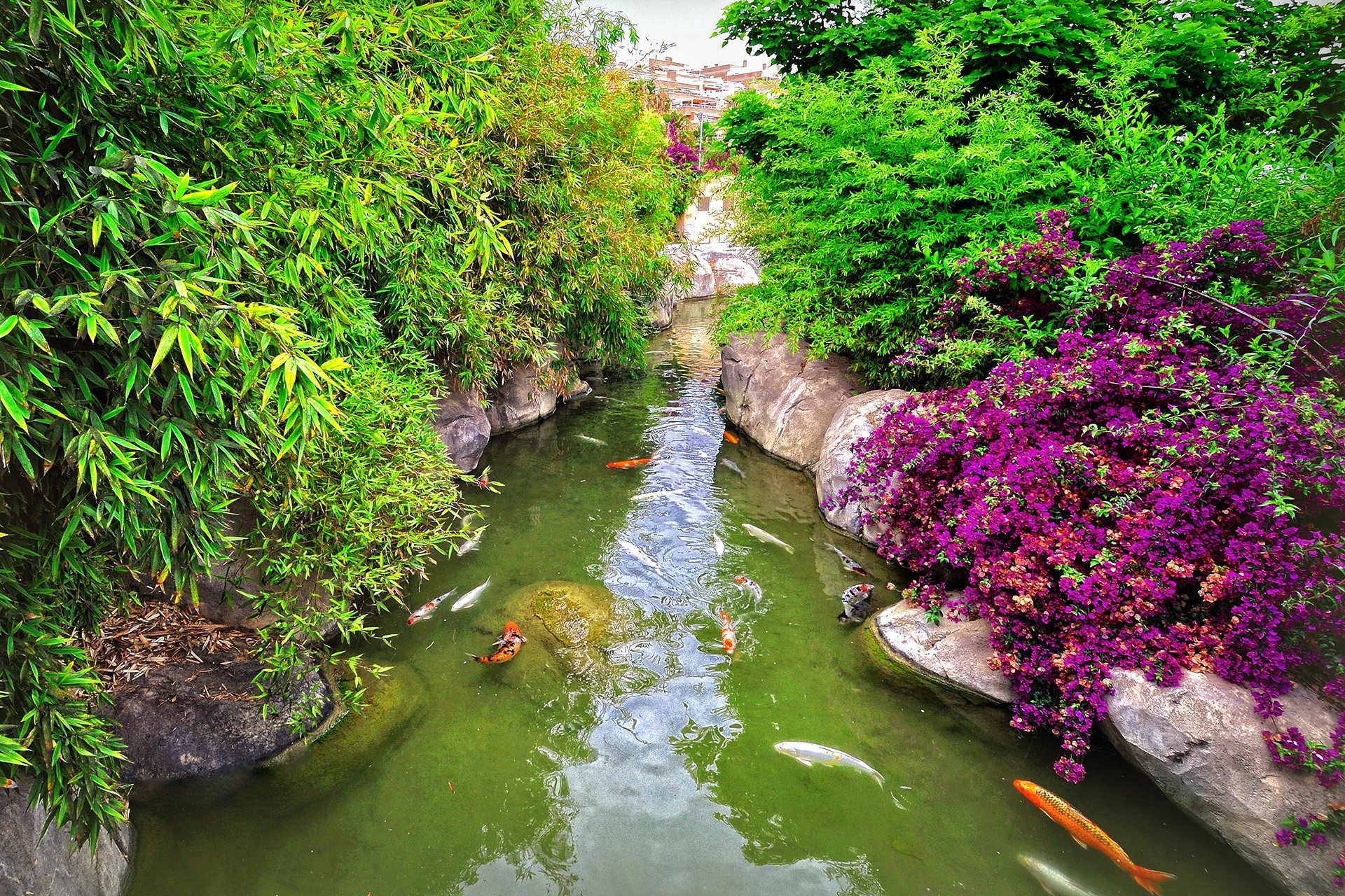bahçe havuzu