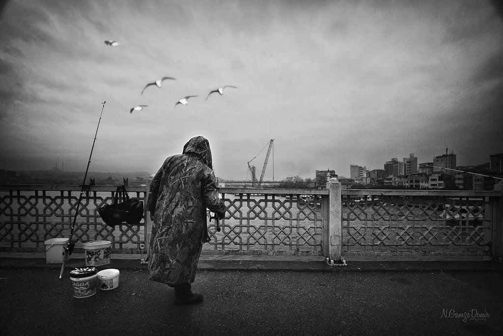 balıkçı ve martılar